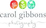 carol gibbons website designer